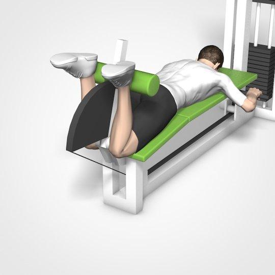 training f r die beine die effektivsten bungen natty gains. Black Bedroom Furniture Sets. Home Design Ideas