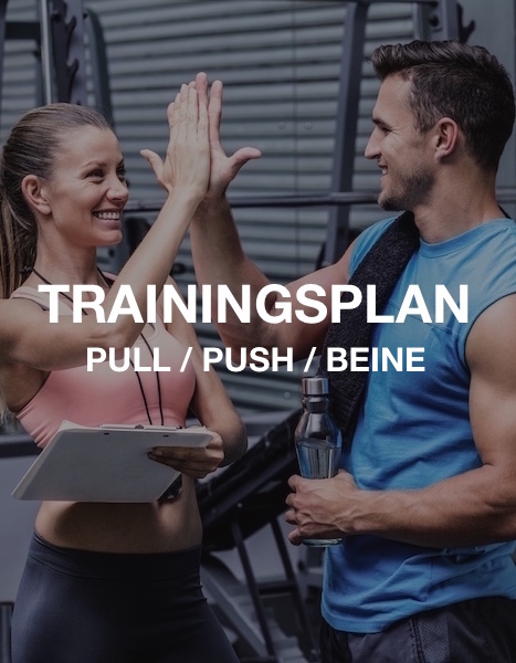 Pull / Push / Beine Trainingsplan