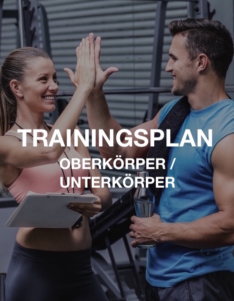 OK/UK Muskelaufbau Trainingsplan