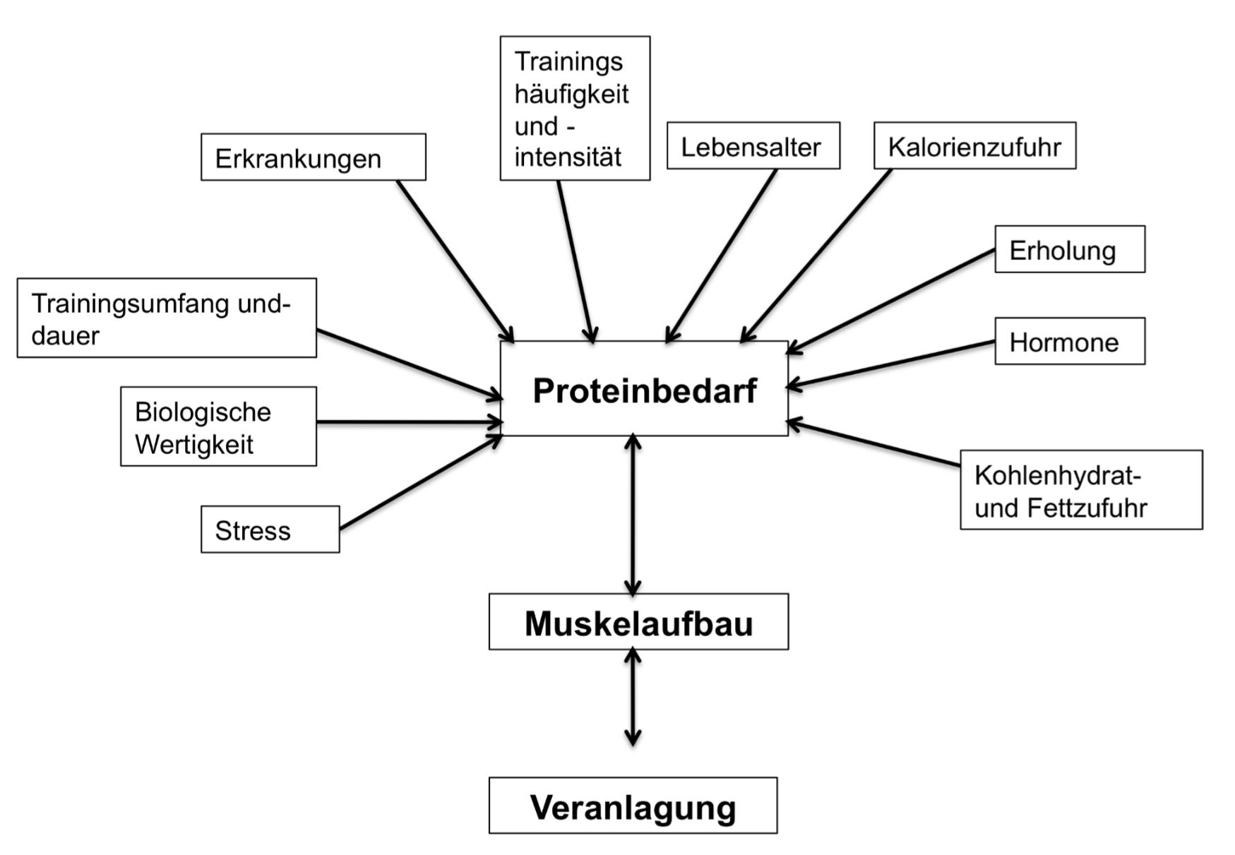Proteine Faktoren