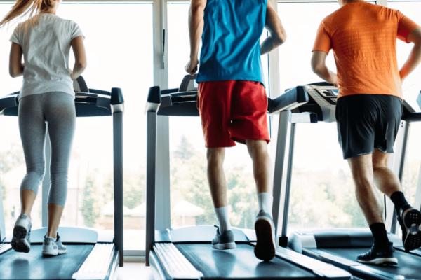 Ernährungsplan-Software mit App als White Label Lösung für Fitnessstudios - Online Ernährungsberatung als Ergänzung zu Ausdauertraining leicht gemacht