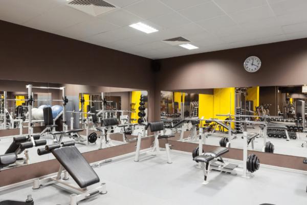 Fitnessstudios als White Label Software Partner für Ernährungsapp - Online Ernährungsberatung ergänzend zu Krafttraining und Ausdauertraining