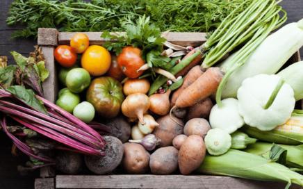 Mikronährstoffe - Mineralstoffe, Spurenelemente und Vitamine - Gesunde Ernährung ohne Mangelerscheinungen